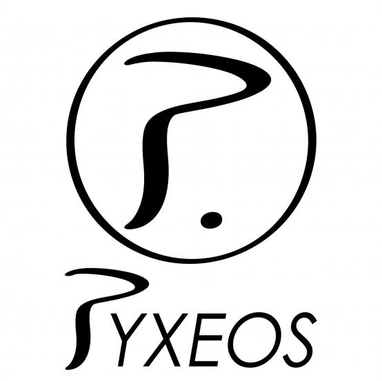 Logo Pyxeos